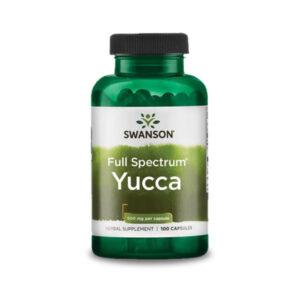 Swanson Yucca