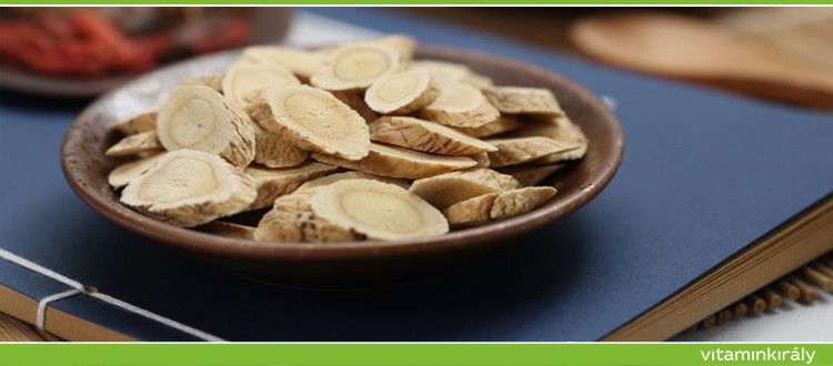 Astragalus gyökér: egy gyógynövény 6 egészségügyi előnnyel