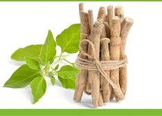 Az ashwagandha 11 bizonyított egészségügyi előnye